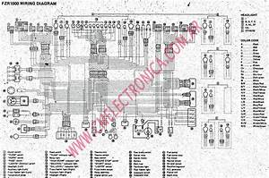 Yamaha Fzr 1000 Wiring Diagram  U2022 Wiring Diagram For Free