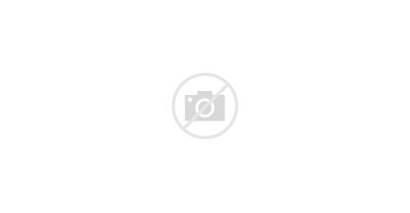 Salad Vegetable Lettuce Clipart Transparent Salade Dark