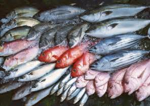 where to get fresh seafood seasource imports wholesale importer of fresh fish
