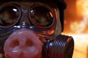 wallpaper digital art pigs clothing headgear costume