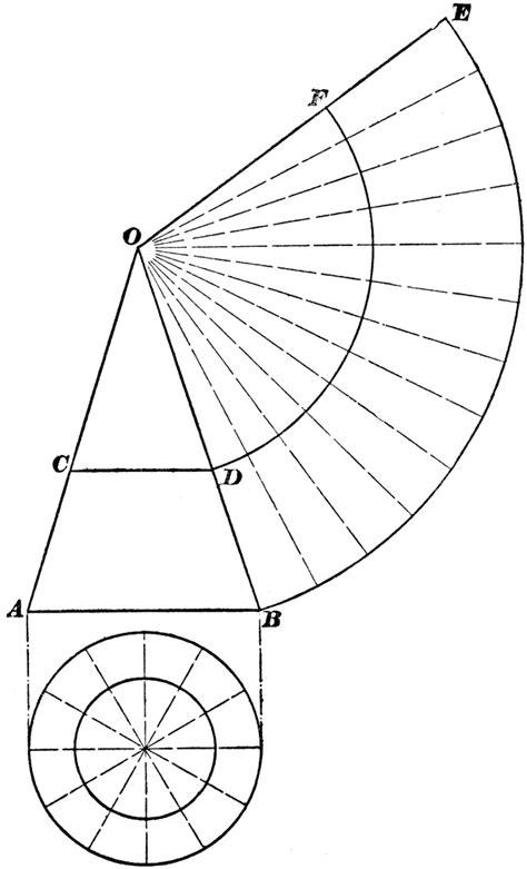 development  cone clipart
