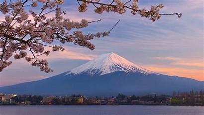Japan Mount Fuji Cherry Wallpoper Mt Blossoms