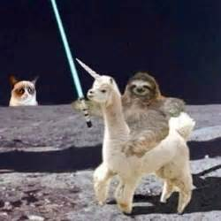 cat a unicorn grumpy cat a sloth a unicorn and a light saber