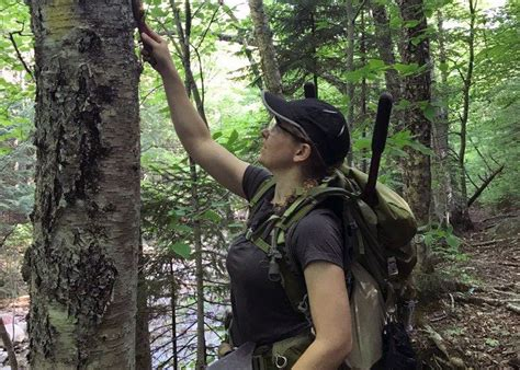 Soldiers In Forestry Program Gain Afterservice Job Skills