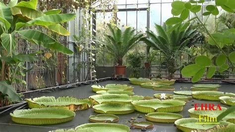 Botanischer Garten Bochum Gewächshäuser by Botanischer Garten An Der Uni Bochum