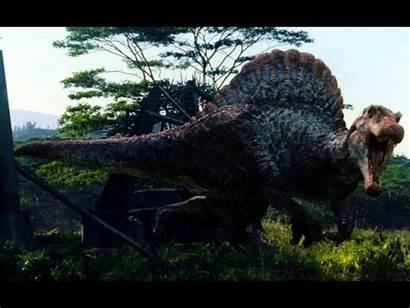 Jurassic Spinosaurus Park Rex Wallpapers Rexy Indominus