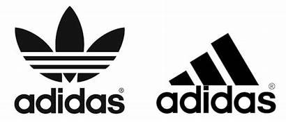 Adidas History Company Three Behind Sports Elements