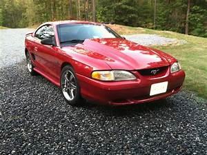 '95 Mustang GT | Sn95 mustang, Ford mustang gt, Ford mustang