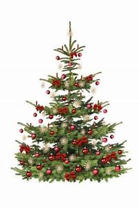 Geschmückter Weihnachtsbaum Fotos : fototapete festlich geschm ckter weihnachtsbaum tanne ~ Articles-book.com Haus und Dekorationen