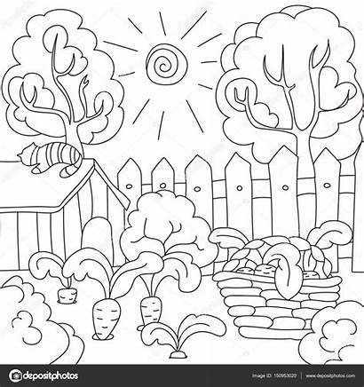 Garden Coloring Colorear Colorare Jardin Carrots Clipart