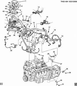Lly Engine Diagram