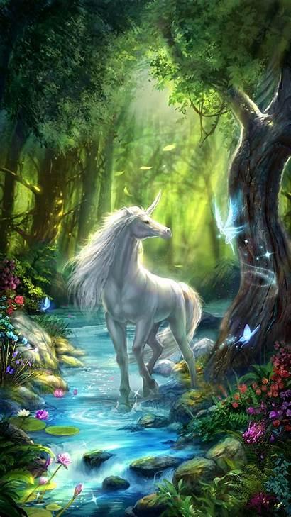 Fairy Unicorn Fairies Forest Unicorns Wallpapers Iphone