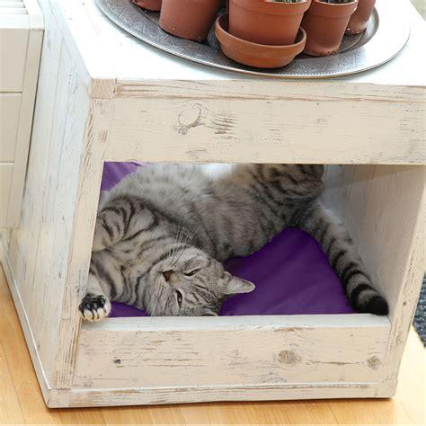 kattenmand steigerhout bloq steigerhouten kattenmand binq design