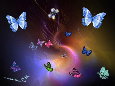 Animated Butterfly Wallpaper - free butterfly wallpaper animated wallpapersafari