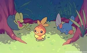 Torchic, Pokémon, Treecko, Mudkip HD Wallpapers / Desktop ...