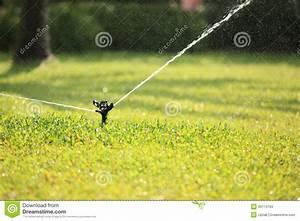 Arrosage Automatique Pelouse : pelouse de arrosage automatique image stock image du ~ Melissatoandfro.com Idées de Décoration
