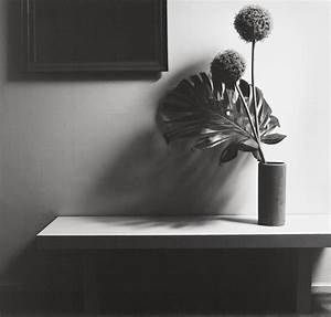 Robert Mapplethorpe from arsvitaest. | Crashingly Beautiful