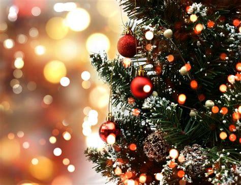 Cute Christmas Tree Photo  Free Download
