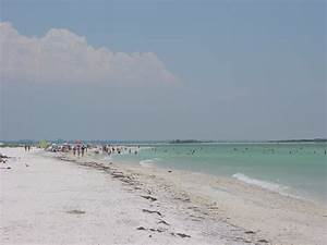 filehoneymoon island state park image 6jpg With honeymoon island state park