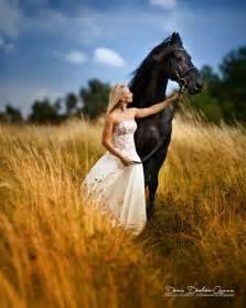 pferde sprüche über 1 000 ideen zu pferde auf quarter horses arabische pferde und appaloosa