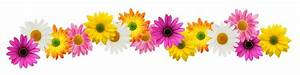 Flower Line Clipart - Clipart Suggest