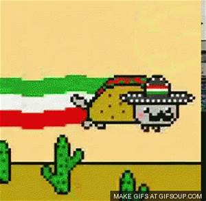 Nyan Cat Celebrates Cinco De Mayo GIF - Mexico - Discover ...