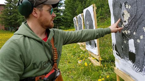 bear defense guns ammo target gear bears magazine ballistic