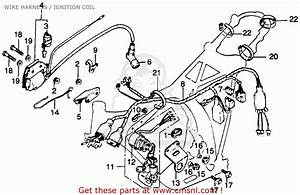 Honda Ct125 Trail 125 1977 Usa Wire Harness    Ignition