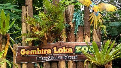 melihat atraksi satwa  kebun binatang gembira loka