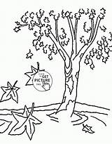 Coloring Tree Fall Pages Nature Trees Printable Printables Wuppsy Leaves Autumn Toddlers Lovely Unique Tags sketch template