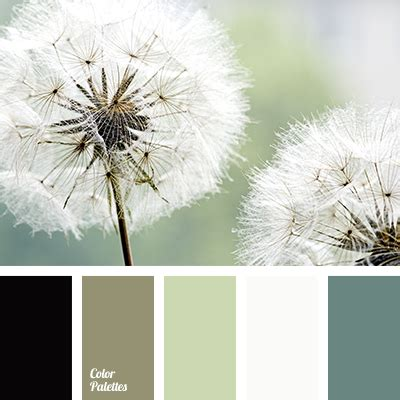 shades  green  gray color palette ideas