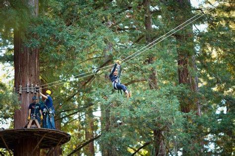 redwood canopy tours mount hermon tripadvisor travel tourism weather for