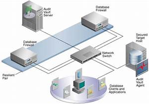 Introducing Oracle Audit Vault And Database Firewall