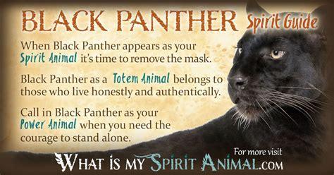 black meaning black panther symbolism meaning spirit totem power animal