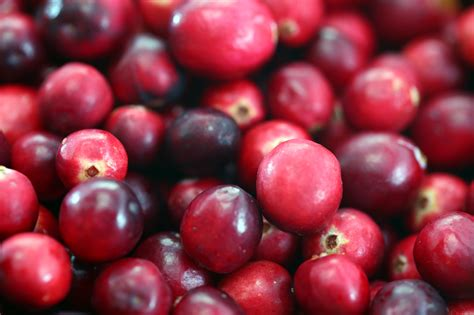 how to cranberries cranberry