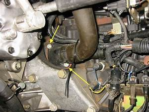 Thermostat Golf 4 : k hlmittelregler t4 wiki ~ Gottalentnigeria.com Avis de Voitures