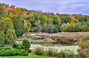 Painting Chair by Minnesota Landscape Arboretum Hometuitionkajang Com