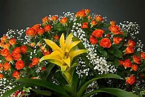 Bilder Von Blumenstrauß : ein blumenstrau foto bild sonstiges naturkunst gestalten mit blumen bilder auf ~ Buech-reservation.com Haus und Dekorationen