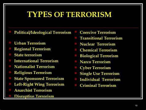 there are a variety of different types of terrorism cyb