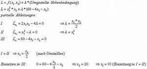 Nutzenfunktion Berechnen : nutzenfunktion gossensche gesetze und der optimale verbrauchsplan ~ Themetempest.com Abrechnung