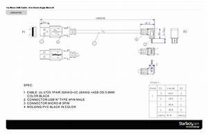 Surge Protector Wiring Diagram