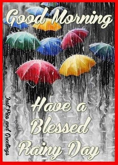 good morning   blessed rainy day pictures
