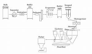 Processing Diagram Of Milk Powders And Yogurt Production