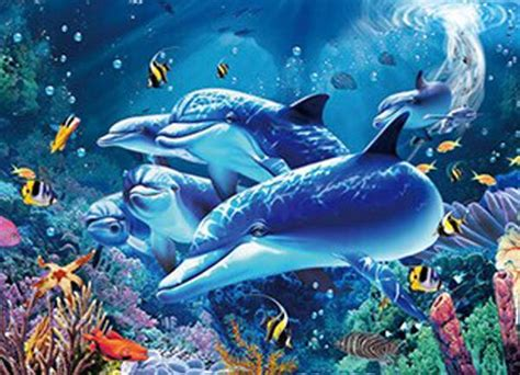 whale turtle dolphin fish marine  flip picturematted
