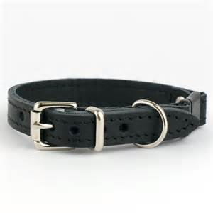 cat collar leather cat collar with swarovski crystals by petiquette