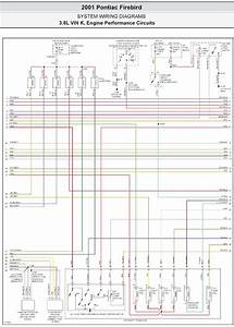 82 Firebird Wiring Diagram  82  Free Engine Image For User