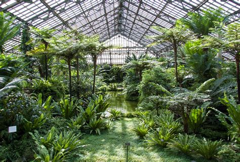 interior house plants garfield park conservatory open house chicago