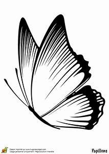 Dessin Facile Papillon : coloriage papillon profil simple sur ~ Melissatoandfro.com Idées de Décoration