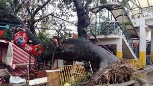 Typhoon Haiyan death toll rises to 5,209 in Philippines