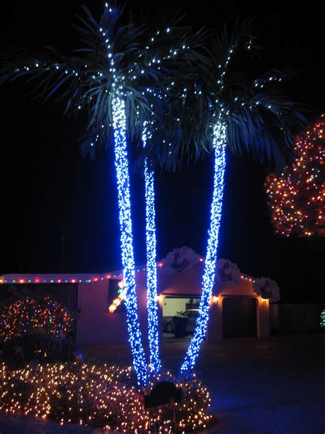 christmas lights for outside trees top 10 biggest outdoor christmas lights house decorations digsdigs